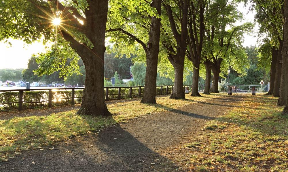 Fotos-von-Berlin-Tegel-Greenwichpromenade