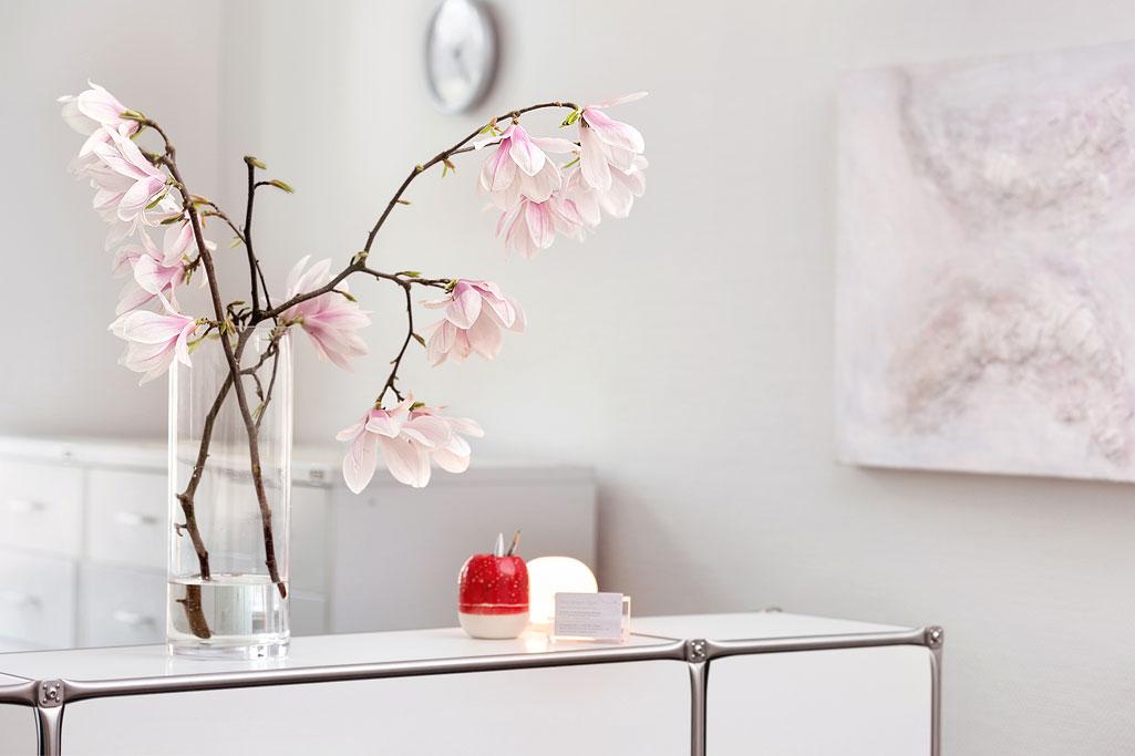 fotograf-arztpraxis-magnolienzweig